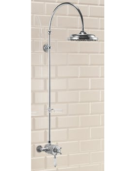 Wye Exposed Thermostatic Shower Valve With Curved Arm and Rose