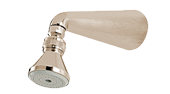 Small Standard Shower Head And Arm