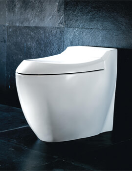 Silverdale Windsor Back To Wall WC Pan