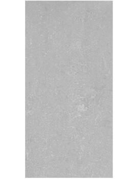 RAK Lounge 30 x 60cm Polished Grey Full Body Porcelain Tile